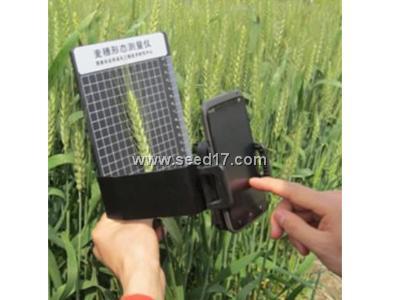 麦穗形态测量仪